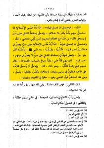 SanadKamalHaydari-40