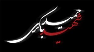 TasvirShakhes-HamidBakeri06