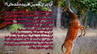 TasvirShakhes-AxMatn-ThaqalainSite-(45)