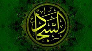TasvirShakhes-EmamSajad-ESQ-15-ThaqalainSite