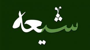TasvirShakhes-ShiaShenasi-8722-02-ThaqalainSite