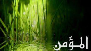 TasvirShakhes-Sadighi-13950518-KhodaMomenAst-ThaqalainSite