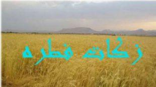 TasvirShakhes-MaheRamezan-123-ThaqalainSite