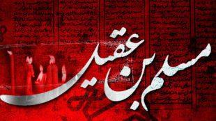 TasvirShakhes-Sadighi-13950711-04-motevasel-shodan-be-hazrate-moslem-ThaqalainSite