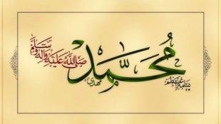 TasvirShakhes-Sadighi-13950714-06-payambar-ra-aziyat-nakonim-ThaqalainSite