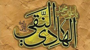 TasvirShakhes-Emam-Hadi-005-ThaqalainSite