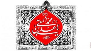 TasvirShakhes-Emam-Hadi-017-ThaqalainSite
