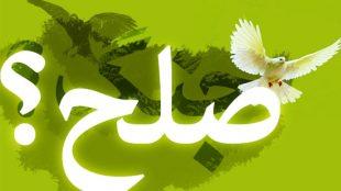 TasvirShakhes-Kashani-13940729-07-jang-ya-solh-ThaqalainSite