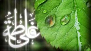 TasvirShakhes-Kashani-13951209-AhamiyateEzdevajeAmiralmomenin(AS)vaHazrateZahra(S)-ThaqalainSite