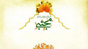 TasvirShakhes-Kashani-13950908-13-shojaat-ImamMojtaba(AS)-Thaqalain_IR