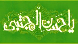 TasvirShakhes-Aya-emam-mojtaba13960417-Thaqalain-Ir