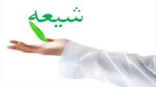 TasvirShakhes-TarikhEslam-40-13960510-Thaqalain-Ir
