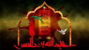 TasvirShakhes-Kashani-shabe05Moharram1395-Thaqalain_IR