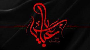 TasvirShakhes-Kashani-shabe09Moharram1395-Thaqalain_IR