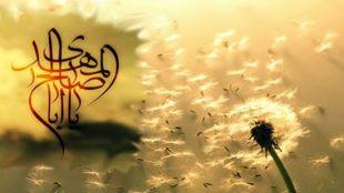 TasvirShakhes-PorseshVaPasokh-AhleBeyt-128-Thaqalain_IR