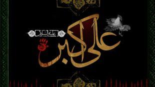 TasvirShakhes-Sadighi-Shabe08Moharram1395-Thaqalain_IR