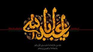 TasvirShakhes-Sadighi-Shabe10Moharram1395-Thaqalain_IR