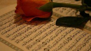 TasvirShakhes-TasvirShakhes-PorseshVaPasokh-Quran-585-Thaqalain-IR