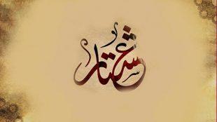 TasvirShakhes-elale adame hob beh ayesheh-13960621