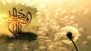 TasvirShakhes-PorseshVaPasokh-AhleBeyt-440-Thaqalain_IR