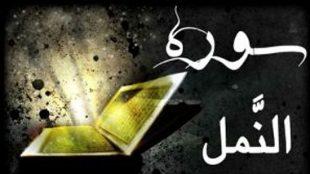 TasvirShakhes-TasvirShakhes-PorseshVaPasokh-Quran-1112-Thaqalain-IR
