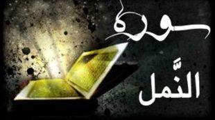 TasvirShakhes-TasvirShakhes-PorseshVaPasokh-Quran-1225-Thaqalain-IR