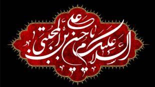TasvirShakhes-Kashani-13960704-07-edameye-rahkare-emam-Hasan-(AS)-dar-jazbe-mardom-tavasote-Emam-Hoseyn-(AS)-Thaqalain_IR