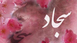 TasvirShakhes-Sadighi-13960724-459-sokhane-emam-Sajjad-(AS)-darbareye-rahe-jobrane-khoobi-ha-Thaqalain_IR