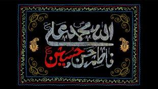 TasvirShakhes-taeine mesdaghe ayeh tathir-13961208