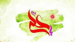 TasvirShakhes-Kashani-Nahj38-06-asarate-sosti-dar-jang-dar-bayane-Amiralmomenin-(AS)-Thaqalain_IR