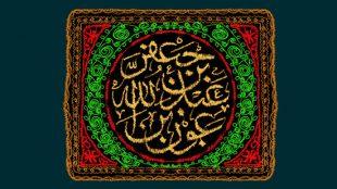 TasvirShakhes-Sadighi-Shabe04Moharram1396-Thaqalain_IR