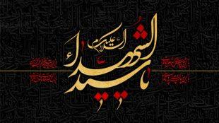 TasvirShakhes-Kashani-13970626-Masaebe-Din-Dari-08-01-Ahamiyat-Danestane-Ahdafe-Hazrate-Seyedoshohada(AS)-Thaqalain_IR