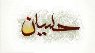 TasvirShakhes-PorseshVaPasokh-AhleBeyt-599-Thaqalain_IR