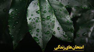 TasvirShakhes-Ostad Sadighi-Gozide Bayanat-26-Thaqalain_IR