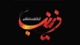 TasvirShakhes-Ostad-RajabiDavani-109-Farzandane-Hazrate-Zeynab(AS)-Thaqalain_IR