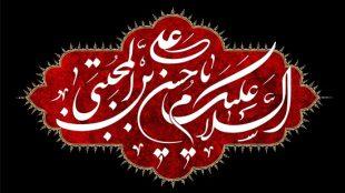 TasvirShakhes-Ostad-RajabiDavani-131-Ellat Va Nahve Shahadate Emam Hasan Mojtaba(AS)-Thaqalain_IR